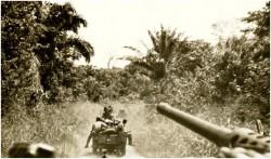 Photo 13 - Jeeps en tête de colonne