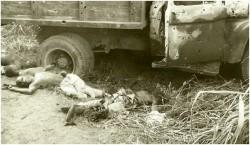 Photo 21   Vue partielle du camion Simba  tombé dans notre embuscade